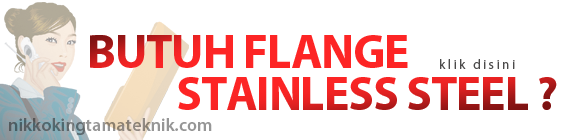 Butuh Flange Stainless Steel ?